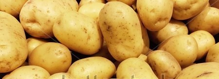 Early potatoes are available in 3L or in Qts.